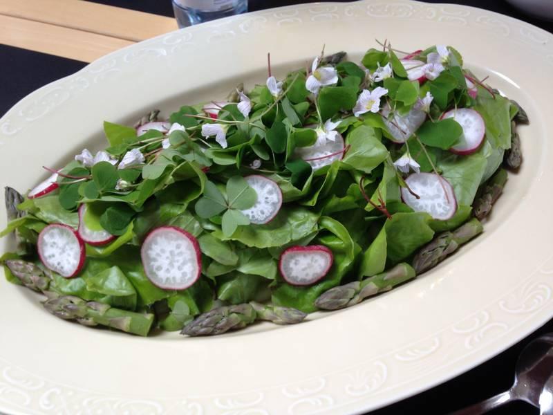 Book et foredrag om at bruge vildt i køkkenet - også det til salaten. Her en lækker bøgesalat.